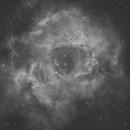 Rosette Nebula - first light with new ASI294MM-Pro camera,                                Dean Jacobsen
