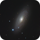 NGC 2841,                                Carsten Dosche