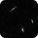 The Leo Triplet  / M66 Group,                                Francesco
