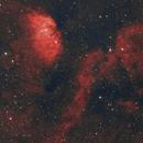 Tulip Nebula - SH2-101,                                Ray's Astrophotography