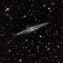 Silver Silver Galaxy NGC891,                                Alf Jacob Nilsen