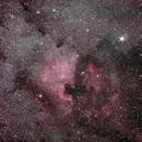 NGC 7000 + Pelikan Nebula - 18 min shot,                                AC1000
