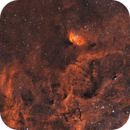 SH2 101 Tulip Nebula bi-colour HOO blend,                                Barry Wilson