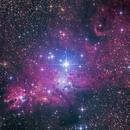NGC 2264, nebulosa del cono,                                JesusM.L.