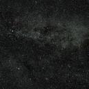 Cygnus,                                Michael Langer