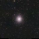 M92 in Hercules,                                Michael Feigenbaum