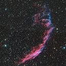 NGC 6992 - Eastern Veil Nebula,                                Michael Blaylock
