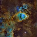 Fish Head Nebula in SHO,                                Ricardo Pereira