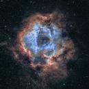 Rosette nebula SHO - NGC2237,                                Arnaldo Lopez