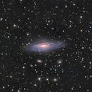 NGC 7331 and Deer Lick group in Pegasus LRGB.,                                Pat Rodgers