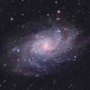 Triangulum Nebula (M33),                                Soner Soysal