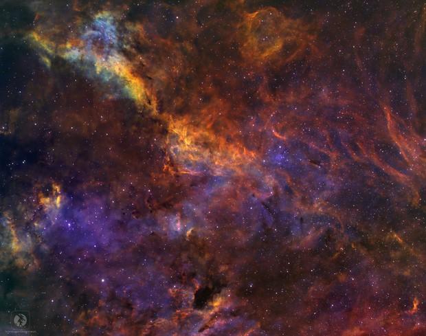 LBN in Cygnus ( LBN 236, LBN 239, LBN 240 LBN 243, LBN 251 ),                                Tayson