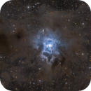 NGC 7023,                                Stefan Roth