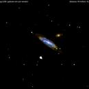 ngc5297 -5296 galassie nei cani venatici                                      distanza 49 milioni  A.L.,                                Carlo Colombo