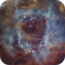 Rosette Nebula Ha-SHO,                                Victor Van Puyenb...