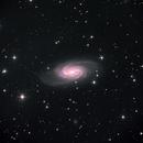 NGC2903,                                ParyshevDenis