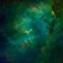 Head of the Lion Nebula (SHO),                                Linda