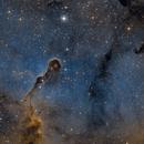 IC 1396A  SHO,                                Bernd Steiner