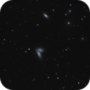 Les Siamoises Sisters NGC 4567 4568,                                litobrit