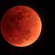 Eclipse total da Lua em 27-09-2015,                                José Carlos Diniz
