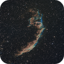 "NGC6992 ""The Eastern Veil Nebula"",                                John Massey"