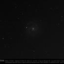 NGC 3184,                                CHERUBINO