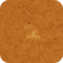 The Sun - Solar Activity Animation,                                Jason Guenzel