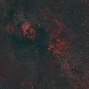 Northern Cygnus Mosaic,                                JDJ