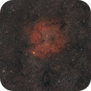 IC1396 au 135mm Samyang,                                Jean-Pierre Bertrand