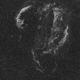 The Cygnus Loop in HA,                                Graeme Coates