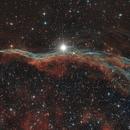 Veil Nebula ,                                Dan Watt