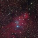 NGC 2264,                                Yuriy Oseyev