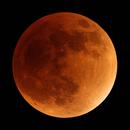 Lunar Eclipse,                                Brian Sweeney