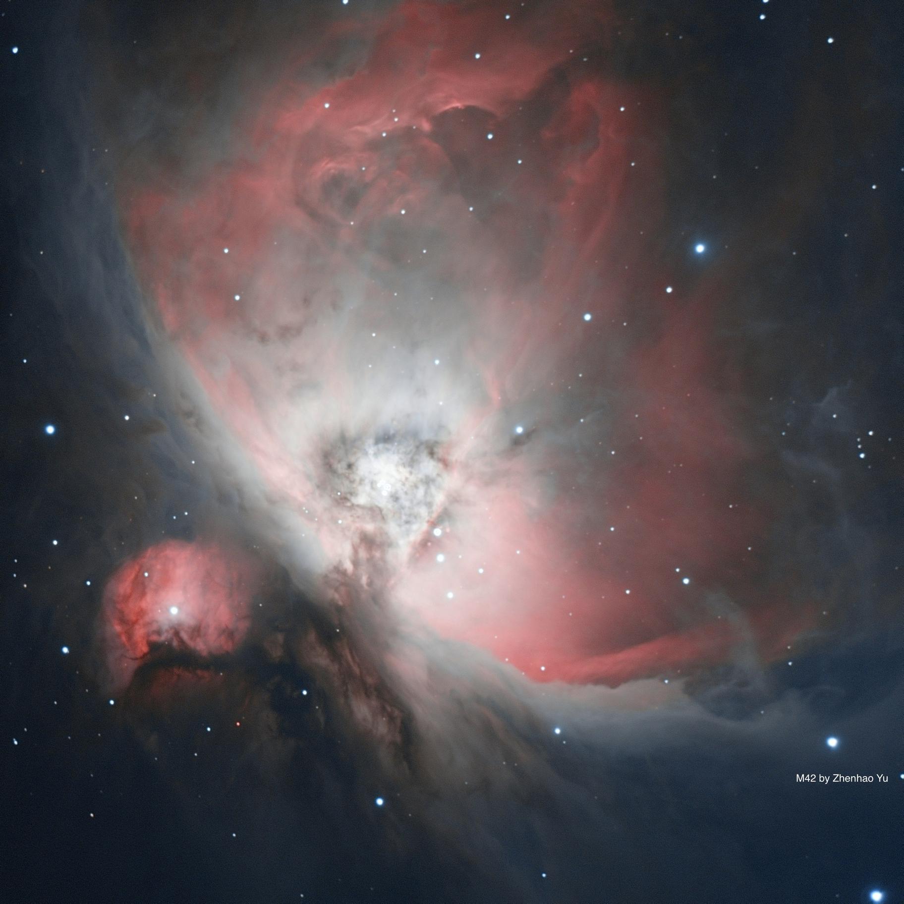 Orion Nebula,                                ZYU1917