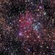 NGC 6823,                                PJ Mahany