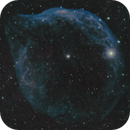Sh2-303 / Sh2-308 - Dolphin Nebula,                                Michel Lakos M.