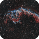 IC 1340 - Eastern Veil,                                Michael Völker