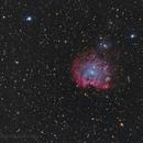 NGC 2174,                                Jarrod McKnelly