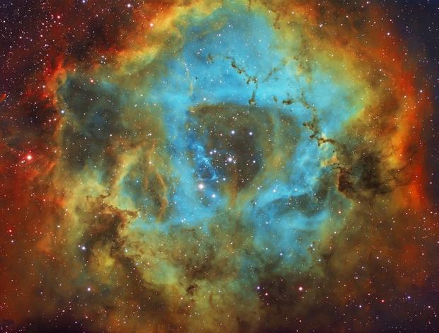 Rosette Nebula - NGC 2237,                                Wissam_Astrophoto...
