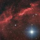 Alniyat - LBN1104 - CED 130,                                Kevin Parker
