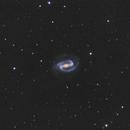 NGC 1300  Galaxie spirale de la constellation de l'Eridan,                                Roger Bertuli