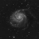 M101 B/W,                                Xavier V