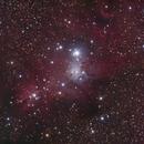 NGC2264,                                laoqiao