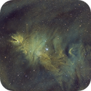 NGC 2264 - Cone Nebula & Christmas Tree Cluster,                                Jess Carlisle