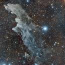 IC 2118 Witch Head Nebula,                                Martin Mutti