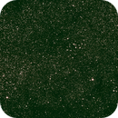 Open clusters in the Swan,                                C.A.L. - Astroburgos