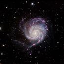 Pinwheel Galaxy (M101) - HaLRGB,                                dswtan