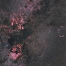 Cygnus widefield,                                Mikael De Ketelaere