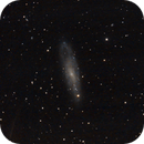 NGC 247, galassia a spirale,                                Giuseppe Nicosia