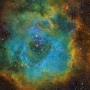 Rosette Nebula,                                rooftopastro